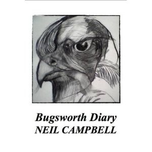 Bugsworth Diary