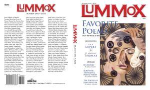 interview-with-raindog-of-lummox-press-L-yIESOL